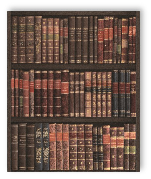 Rasch tapete crispy paper 525809 old bookshelf books for Fleece tapete