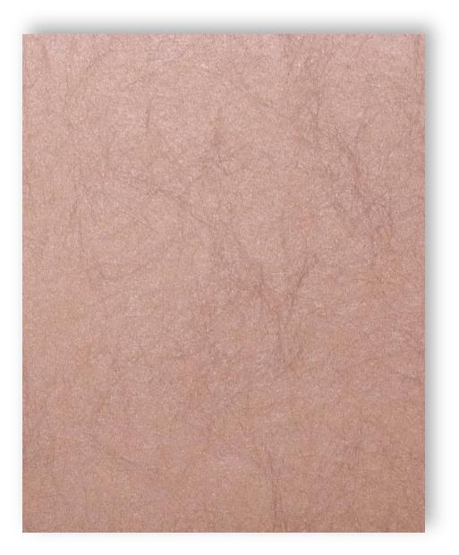 rasch papier peint gentle divine 216027 monochrome uni fibre optique ebay. Black Bedroom Furniture Sets. Home Design Ideas