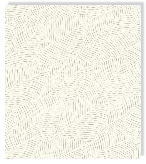 Rasch Tapete Denzo 404012 grafisch weiß silber Punkte Vliestapete Vlies